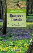 Bosques y florestas